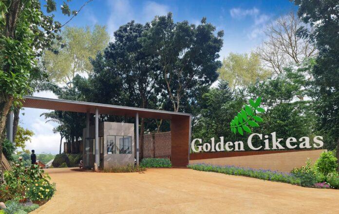 Golden Cikeas
